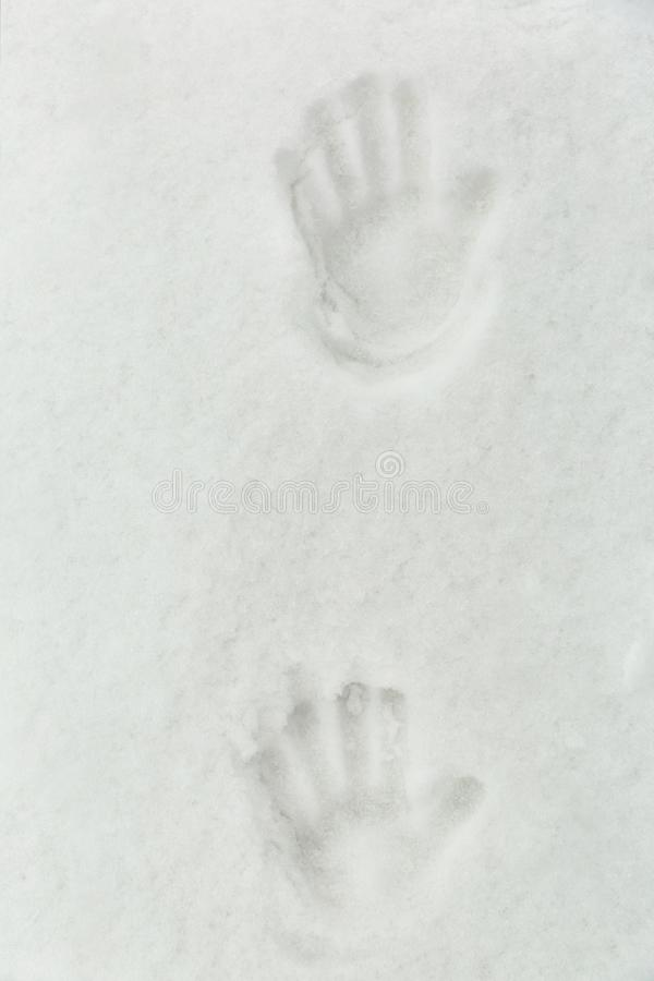 Handprint na neve fotos de stock royalty free