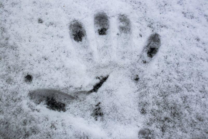 Handprint na neve em uma superfície escura com o aresa derretido nas extremidades dos dedos fotografia de stock royalty free