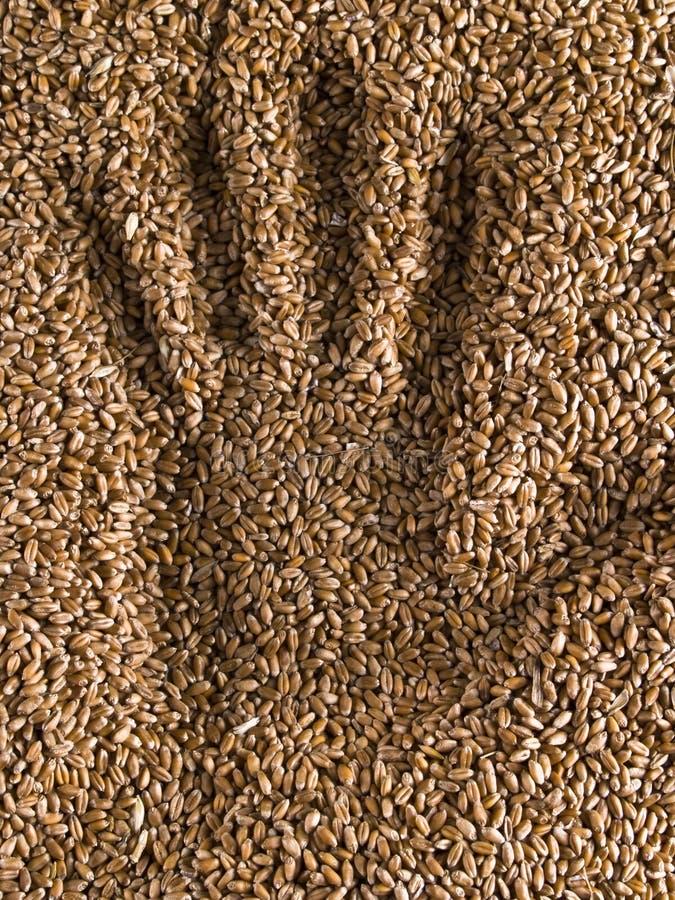 Handprint Weizen lizenzfreies stockbild
