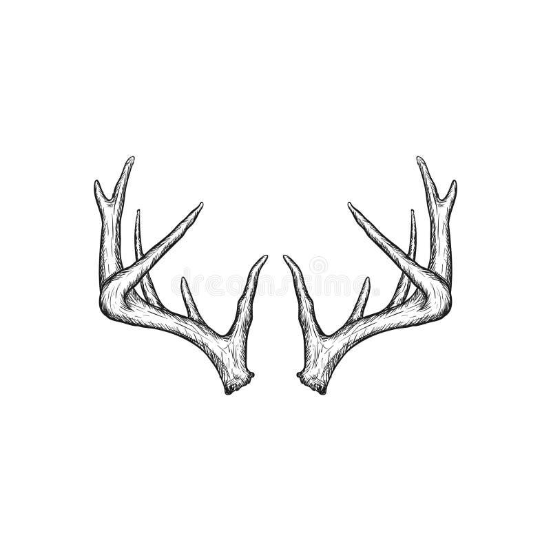 Handrawn horn på kronhjortvektor som jagar logodesigninspiration royaltyfri illustrationer