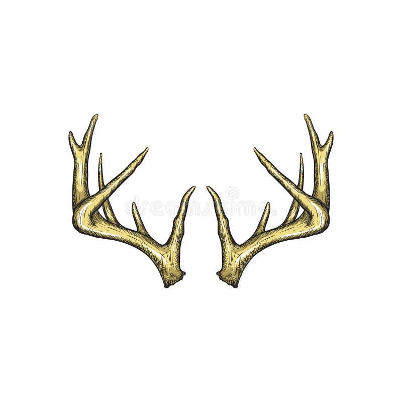 Handrawn poroże wektor, Łowiecka logo projekta inspiracja ilustracja wektor