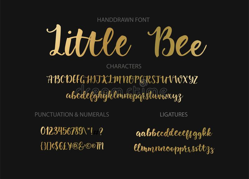 Modern calligraphic font. Brush painted letters. Handrawn vector alphabet. Modern calligraphic font. Brush painted abc with ligatures vector illustration