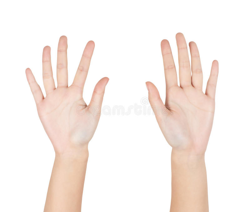 Download Hands stock photo. Image of palms, isolated, hand, showing - 29023656
