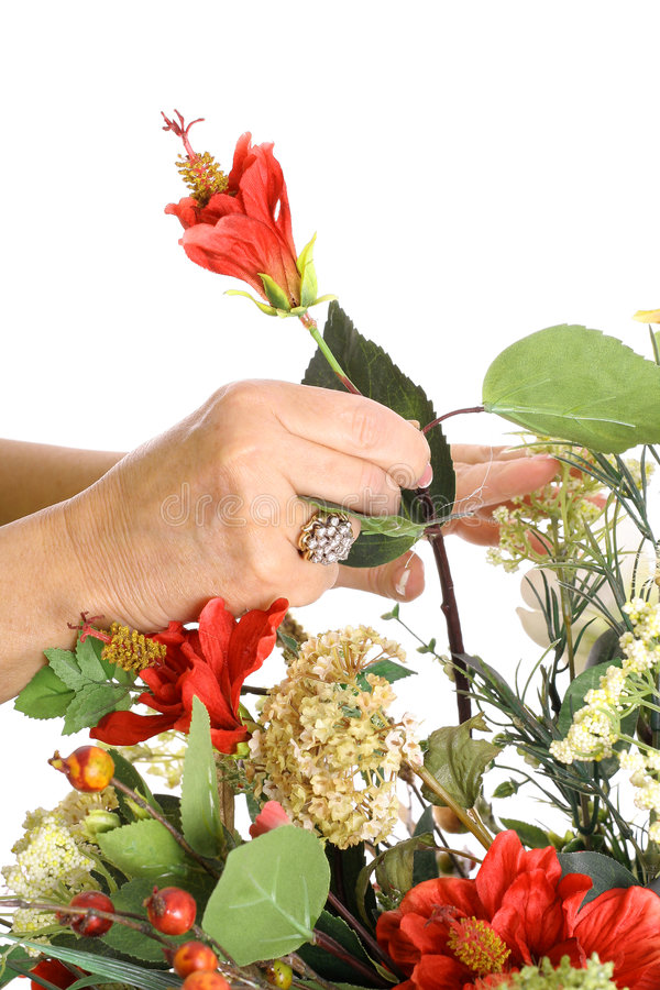 Download Hands arranging flowers stock image. Image of health, celebration - 3770793