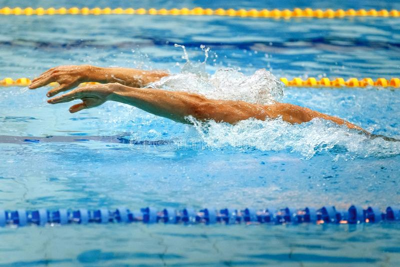 Hands athlete swimmer stock photography