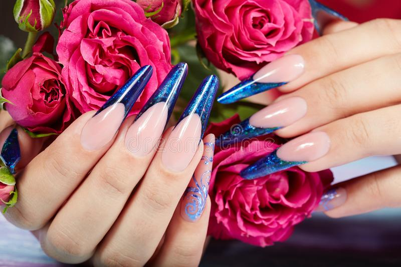 Hands with long artificial blue french manicured nails and rose flowers royalty free stock photos