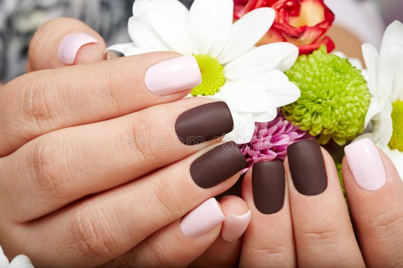 Hands with beautiful pink and purple manicured nails. Hands with pink and purple manicured nails and a bouquet of flowers royalty free stock photo