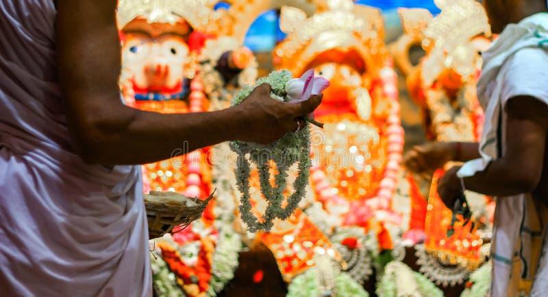 Hands of Brahmin Purohit Panda offering white tuberose rajanigandha flowers to lord jagannath balaram suvadra during rath yatra fe. Stival stock photo