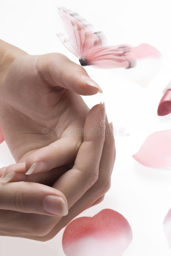 Hands butterfly stock photography