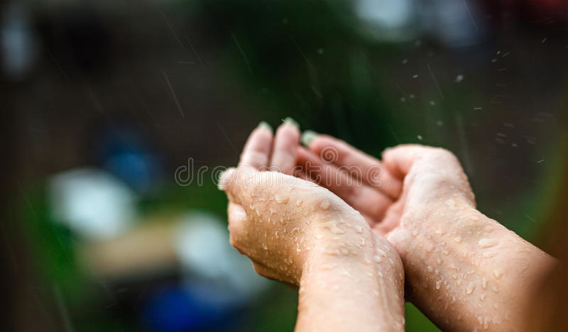 Hands catching clean falling rain water close up. Environmental and weather concept. stock image