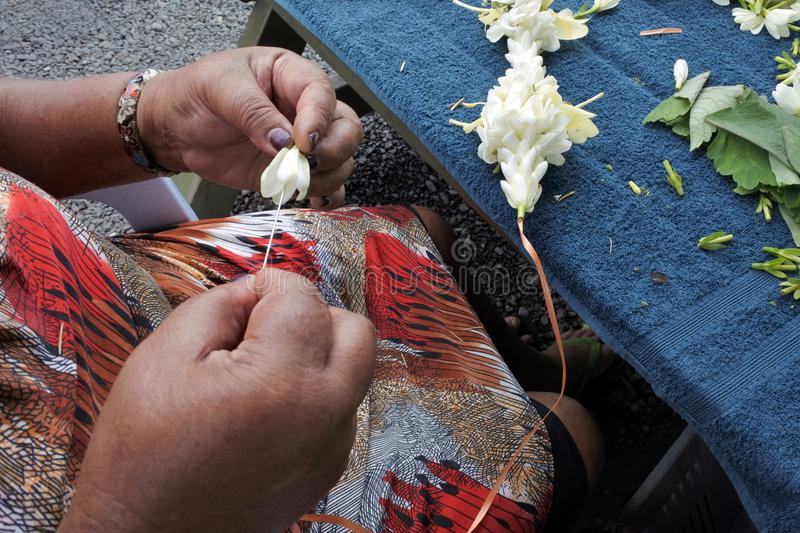 Cook Islander mature woman sewing a frangipani flowers lei Rarotonga Cook Islands royalty free stock images