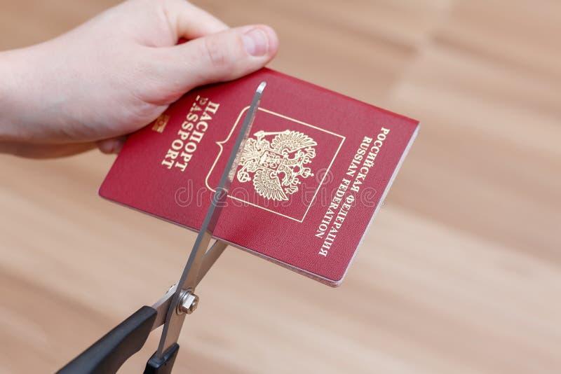 Hands cut international passport scissors.  stock photos