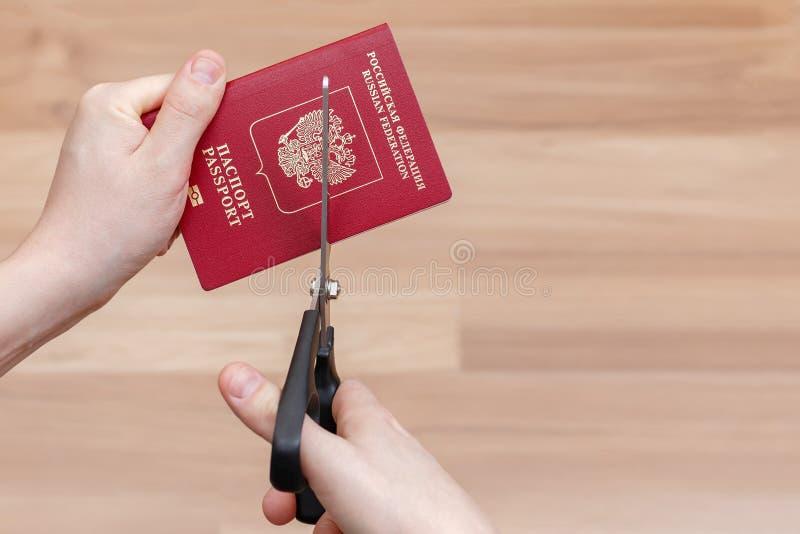 Hands cut international passport scissors.  stock photo