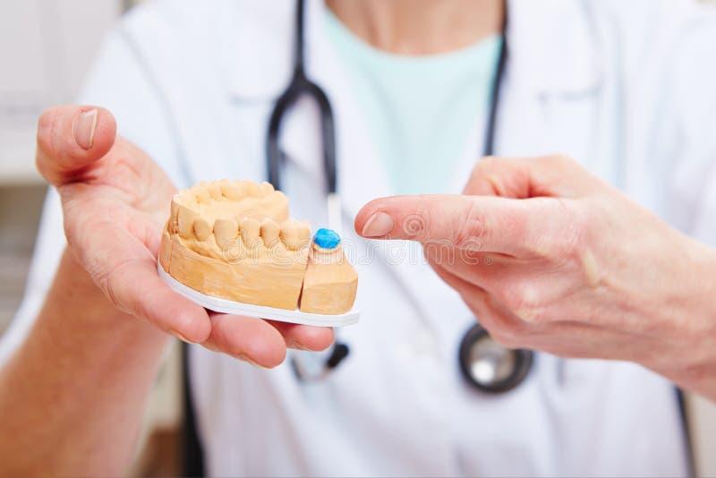 Hands of dental technician stock photography