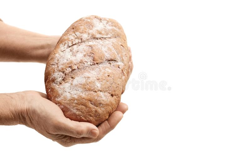 Hands of an elderly person holding a loaf of bread royalty free stock images