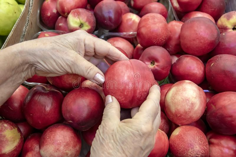 Hands of an elderly woman choosing ripe nectarine royalty free stock images