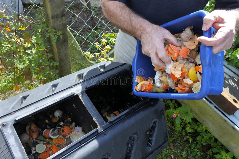 Hands emptying a container full of domestic food waste. Mature man hands emptying a container full of domestic food waste, ready to be composted in the home royalty free stock photos