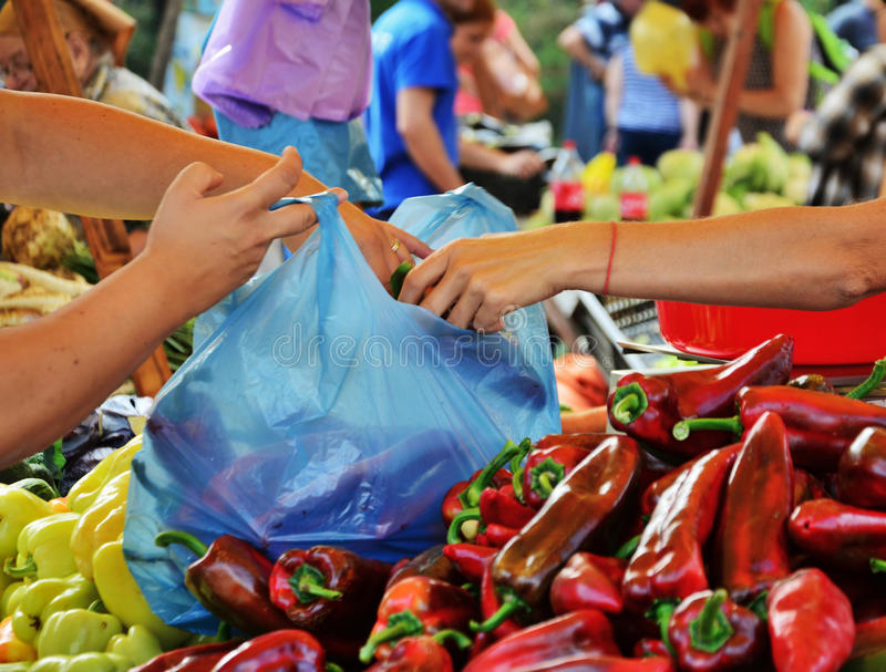 Hands filling a plastic bag with fresh vegetables stock images