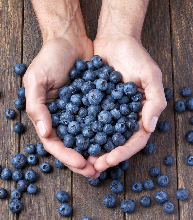Hands Fresh Blueberries Food stock images