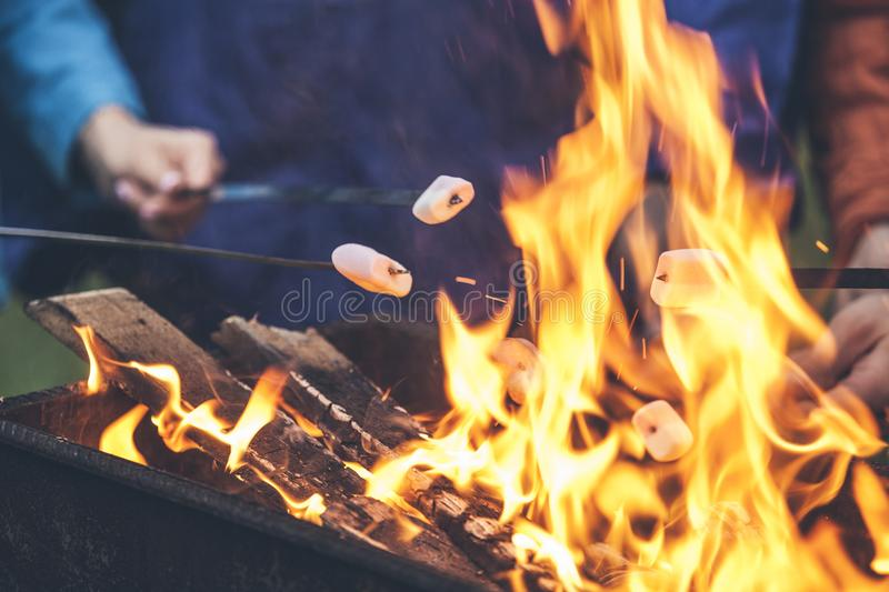 Download Hands Of Friends Roasting Marshmallows Over The Fire In A Grill Stock Photo