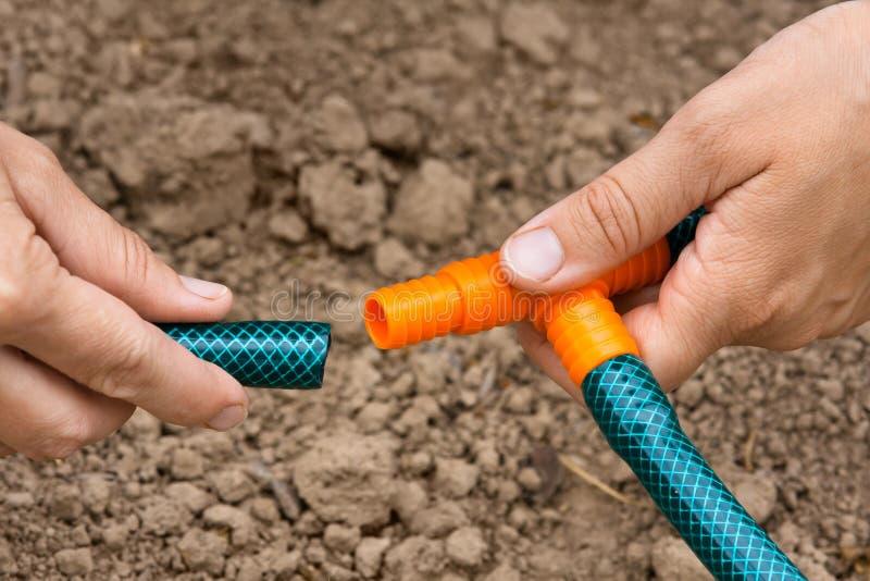 Hands of gardener connecting garden hoses, closeup royalty free stock photos