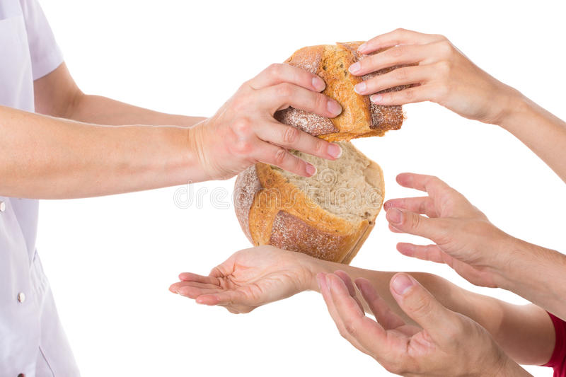Hands grabbing for bread. Multiple hands grabbing for food stock photos