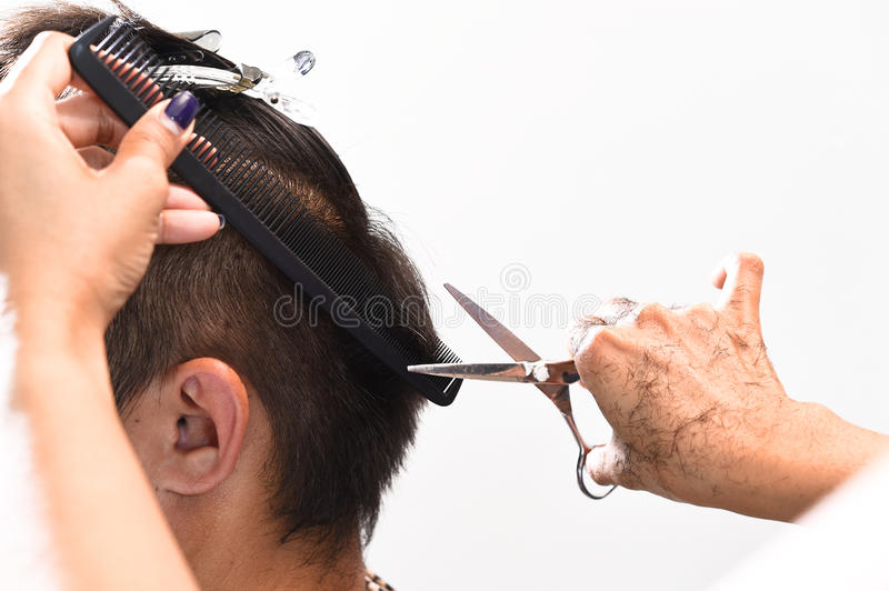 Hands of a hair stylist trimming hair with a comb and scissors stock photos