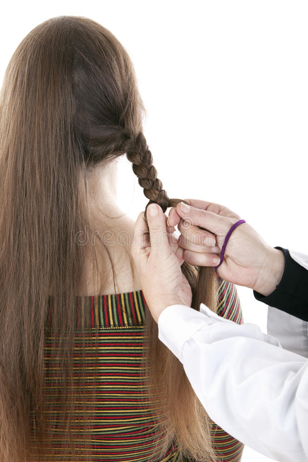 Download Hands Of Hairdresser Doing A Braid A Long Mane Stock Photo - Image: 27538238