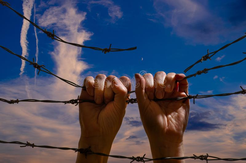 Hands Hanging on the Barbed Wire royalty free stock photo