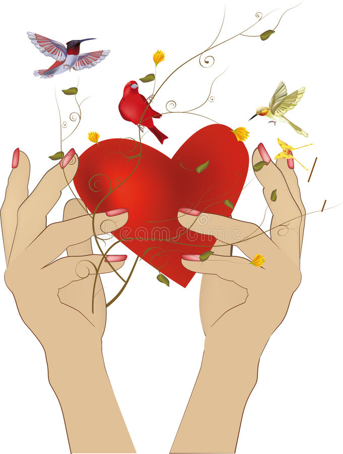 Download Hands and heart stock vector. Illustration of fragility - 12311489