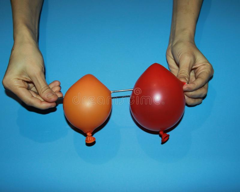 Hands hold a red balloon and orange pierce with a sharp thin pin with a needle metal simple magic trick illusion stock photo