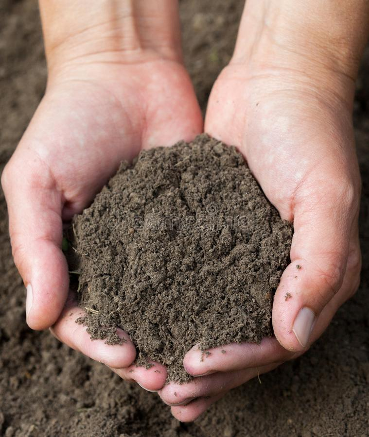 Hands holding black soil. Close-up stock photo