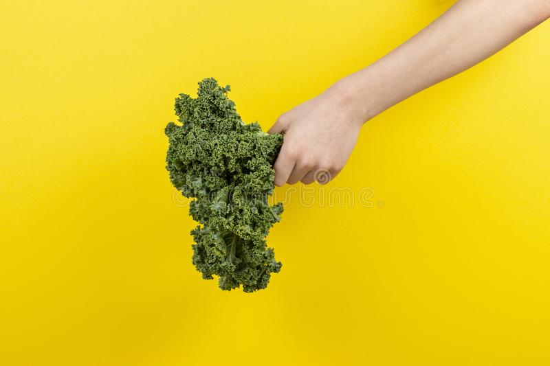 Hands holding a bunch of kale leaves over yellow background. Kid hands holding a bunch of kale leaves over yellow background stock photo