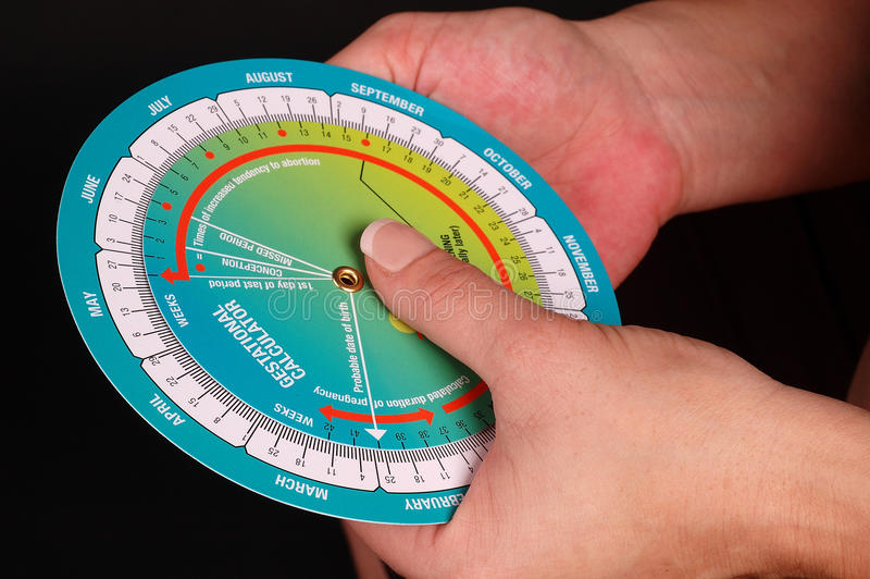 Hands holding a Gestational Calculator. Woman holding a Gestational Calculator stock image
