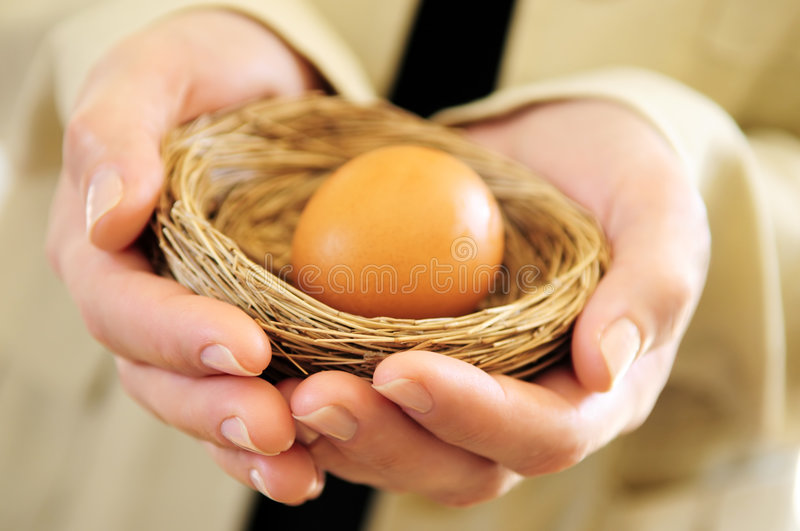 Hands holding nest with an egg royalty free stock image