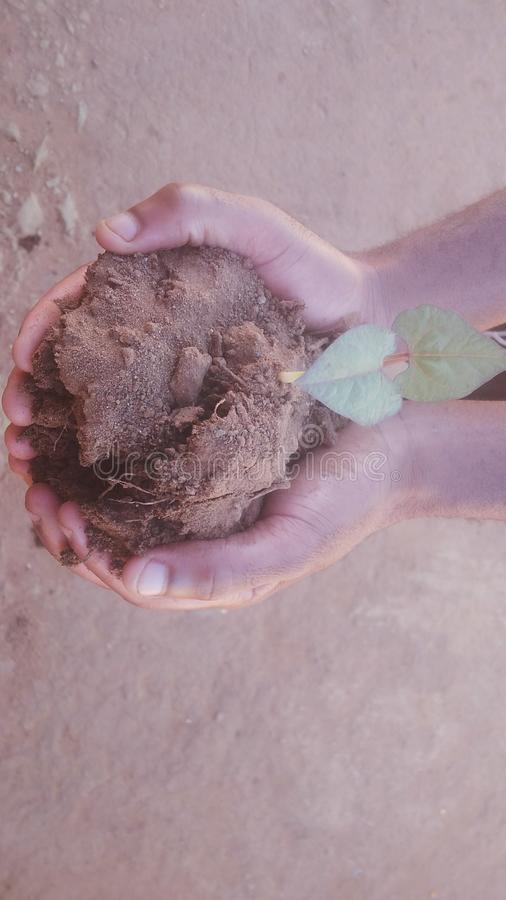 Hands holding a plant and soil. Two hands of a person holding a plant by soil,this symbolises the fact that,everyone`s future is in his/her hands stock photography