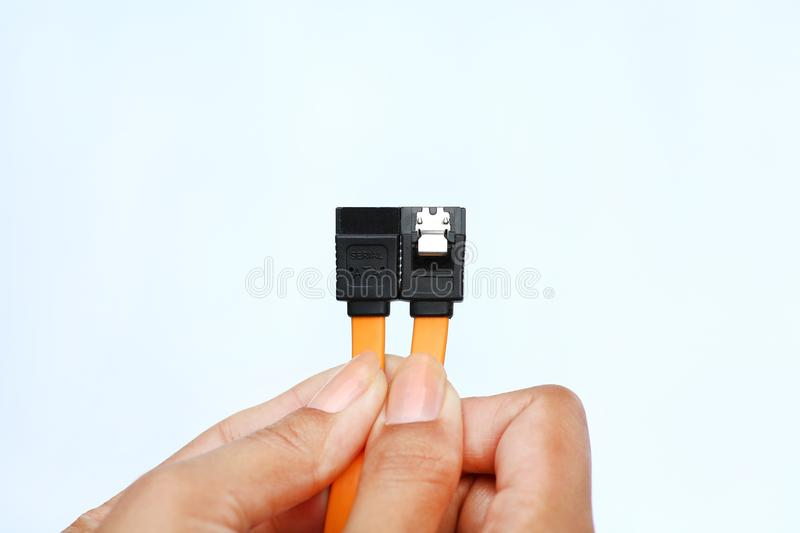 Hands holding sata data cable on white background royalty free stock photo
