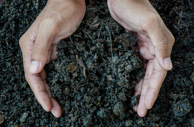 Download Hands Holding Soil, Organic Fertilizer Stock Image - Image of dirt, fertile: 56483705