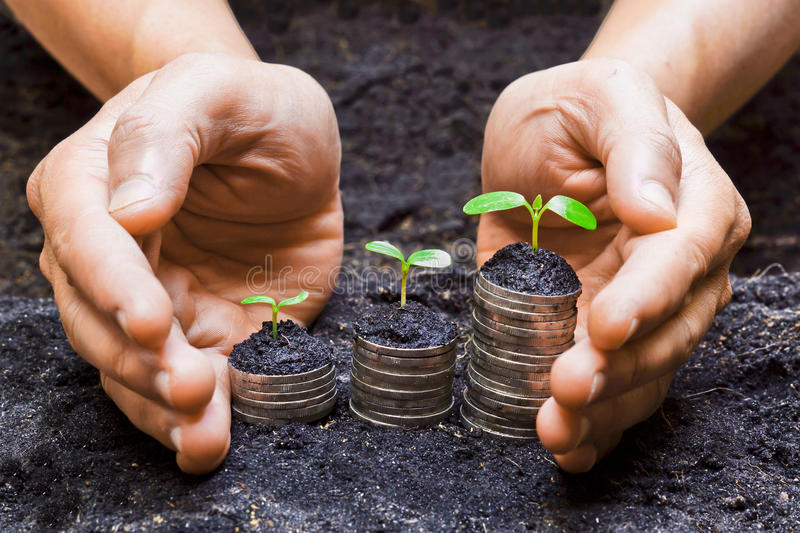 Hands holding tress growing on coins. / csr / sustainable development / economic growth stock photos