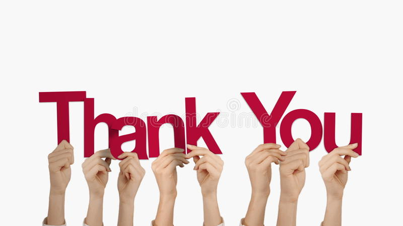 Hands holding up thank you. On white background stock video footage
