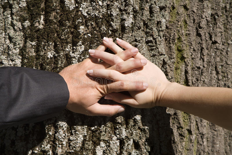 Download Hands of husband and wife stock image. Image of woman - 11151351