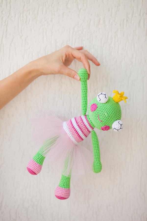 In the hands of a knitting craftsman, her creation is a toy green frog in a pink dress and with big eyes royalty free stock photo