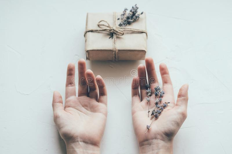 Hands lavender gift stock photo