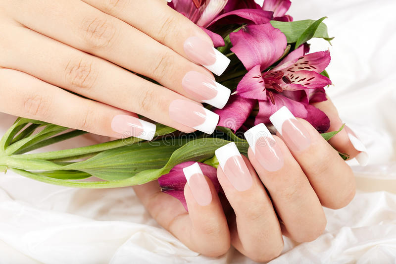 Hands with long artificial french manicured nails and lily flowers. Hands with long artificial french manicured nails on Alstroemeria lily flowers background royalty free stock images