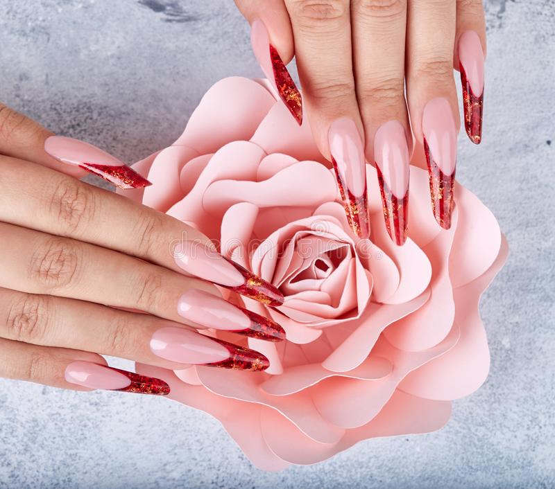 Hands with long red artificial french manicured nails and pink rose flower. Gray background stock photo