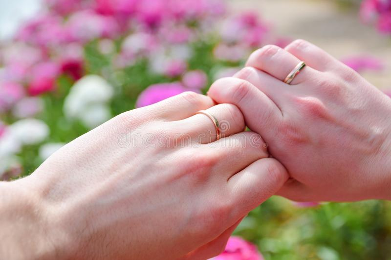 Hands of married couple with wedding rings against pink flowers royalty free stock image