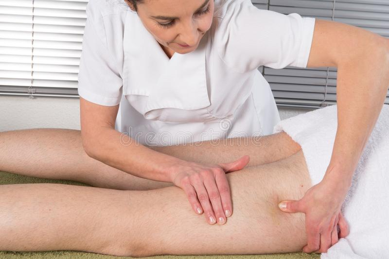 hands massaging human calf muscle.Therapist applying pressure on female leg thigh royalty free stock photography