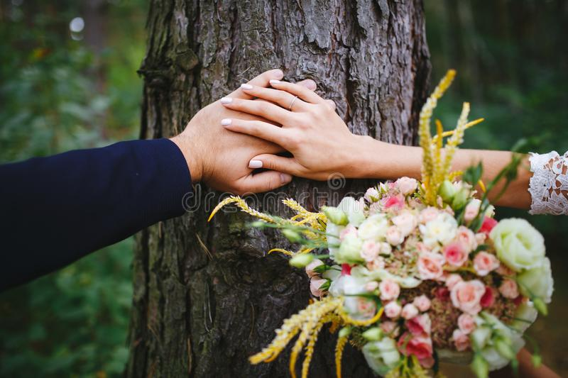 Hands of the newlyweds with wedding rings stock photos