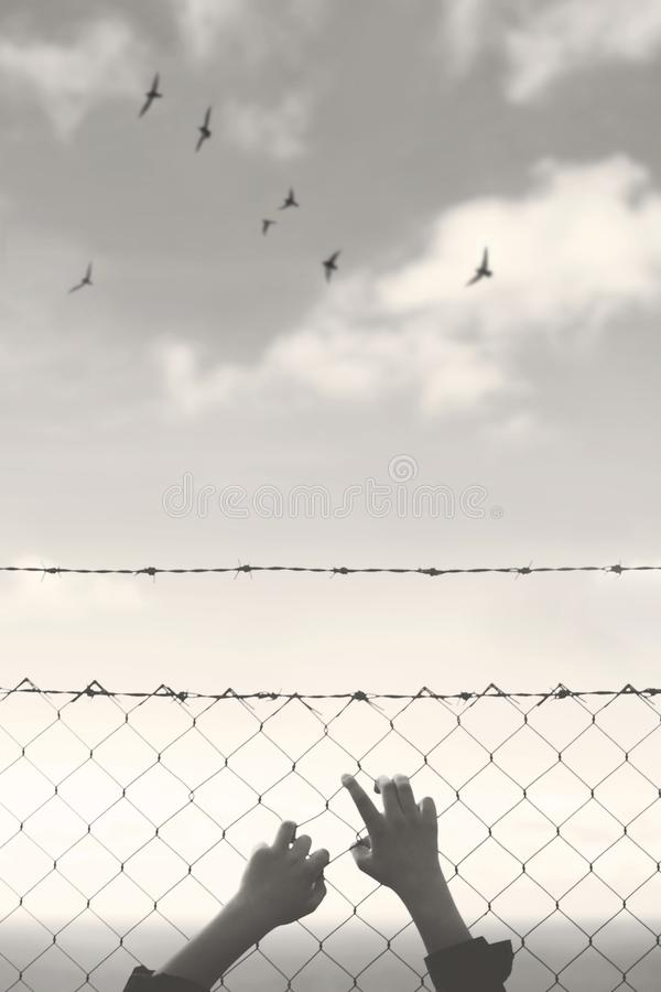 Free Hands Of A Young Man Who Cling To The Hope Of Freedom Beyond A Wire Mesh Stock Photo - 124317840