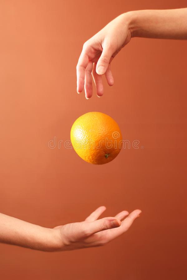 Hands and orange royalty free stock images